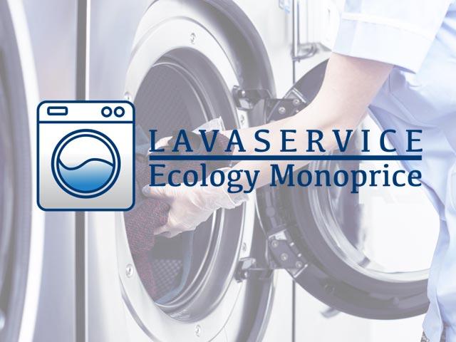 Fastbyte Progetti Business Wordpress Lavaservice Ecology Monoprice